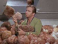 Tribbles Aren't The Trouble.  Labels Are. (2/2)